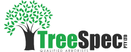 TreeSpec Qualified Arborists